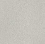 70 - RAL Argento Dorato matt