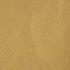 74 - RAL Brass matt